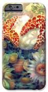 Tidal Pool II IPhone 6s Case by Ann  Nicholson
