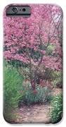 Tranquil Pathway IPhone 6s Case by Robert Bray