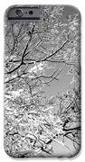 Tree Art IPhone 6s Case