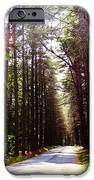 Tree Lined Road IPhone 6s Case by Crystal Joy Photography