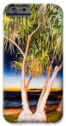 Trees At Night IPhone 6s Case by Lisa Cortez