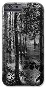 Trees Bw IPhone 6s Case