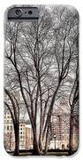 Trees  IPhone 6s Case by Mark Block