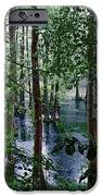 Trees IPhone 6s Case by Nelson Watkins