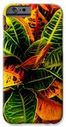 Tropical Croton Vignette IPhone 6s Case by Lisa Cortez