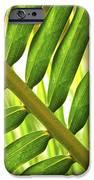 Tropical Leaf IPhone Case by Elena Elisseeva