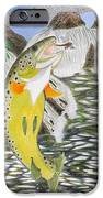 Trout Stream In May IPhone Case by Gerald Strine