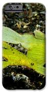 Two Robust Ghost Pipefish In Volcanic IPhone Case by Steve Jones
