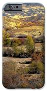 Valley View IPhone Case by Robert Bales