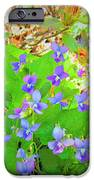 Violets IPhone 6s Case by Debbie Sikes
