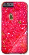 Water Fall IPhone 6s Case by Candice Trimble