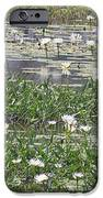Water Lilies IPhone 6s Case by Gordon  Grimwade