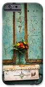 Weathered Door IPhone 6s Case by Patty Descalzi