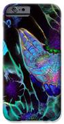 Webbed Galaxy IPhone 6s Case by Nan Bilden
