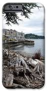 West Seattle Front Yard IPhone 6s Case by Christine Burdine