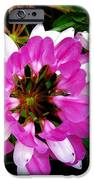 White And Purple Wildflower IPhone 6s Case by Mark Malitz