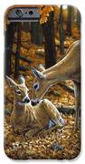 Whitetail Deer - Autumn Innocence 2 IPhone 6s Case by Crista Forest
