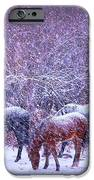 Wild Horse Christams IPhone 6s Case by Jeanne  Bencich-Nations