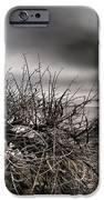 Wild Shore IPhone 6s Case by Victoria Herrera