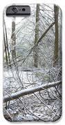 Winter Fallen Tree IPhone Case by Thomas R Fletcher