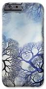 Winter Lace IPhone 6s Case by Helen Klebesadel