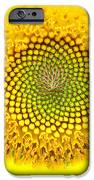 Yellow Dreams  IPhone 6s Case by Kim Galluzzo Wozniak