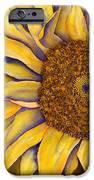 Yellow Sunflower IPhone 6s Case by Diane Ferron