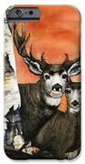 Busted IPhone 6s Case by Diane Ferron