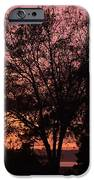 Sunset IPhone 6s Case by Saifon Anaya