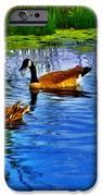 Baby Ducks IPhone 6s Case