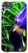 Iris IPhone 6s Case by Kevyn Bashore
