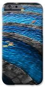 Koi Blue IPhone 6s Case by Kelly Rader