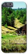 Nw California Country Road IPhone 6s Case