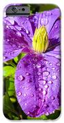 Purple Rain IPhone 6s Case by Sergio Aguayo