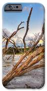 Shoreline Beach Driftwood And Grass IPhone 6s Case by Jenny Ellen Photography