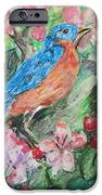 Spring Bluebird Collage IPhone 6s Case