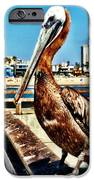 The Mayor Of Venice Pier IPhone 6s Case