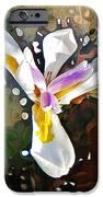 Venice Iris IPhone 6s Case by Daniele Smith