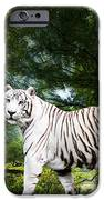 White Bengal IPhone 6s Case by Elizabeth Hart