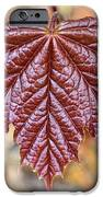 Leaf IPhone 6s Case