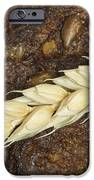 Close Up Bread And Wheat Cereal Crops IPhone 6s Case