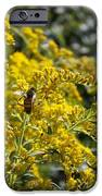 A Flower That Bees Prefer IPhone 6s Case by Guy Ricketts