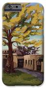 A Tree Grows In The Courtyard, Palace Of The Governors, Santa Fe, Nm IPhone 6s Case by Erin Fickert-Rowland