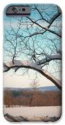 Afterr The Blizzard IPhone 6s Case