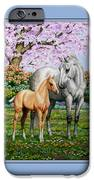 Spring's Gift - Mare And Foal IPhone 6s Case by Crista Forest