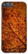 Autumn Colours IPhone 6s Case by Stuart Deacon
