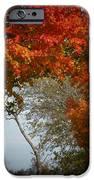 Autumn Gate IPhone 6s Case