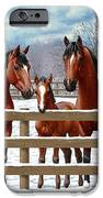 Bay Quarter Horses In Snow IPhone 6s Case