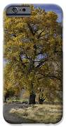 Belfry Fall Landscape 5 IPhone 6s Case by Roger Snyder