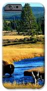 Bison IPhone 6s Case by Carrie Putz